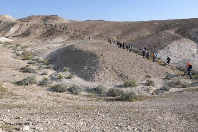 רמת המדבר באזור נחל תור 1