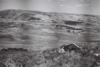 Hartuv June1949
