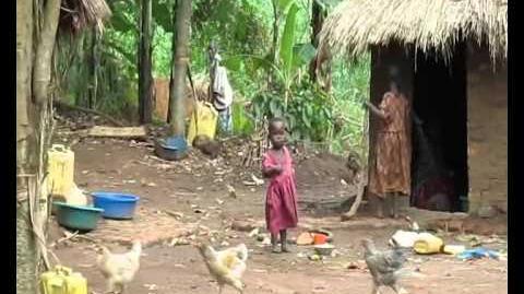 שבט האבאיודיה - אוגנדה