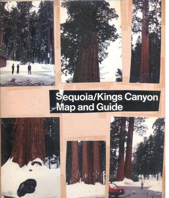 Sequoia kings canyon.jpg