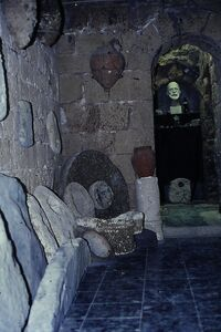 Museon hachan 3