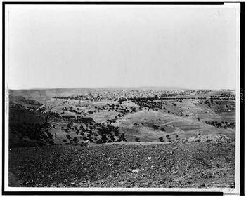 מבט מצפון מזרחי -אוסף בונפיל