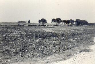 Latrun 1971 b