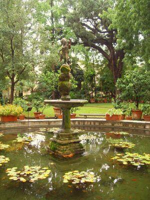 Orto Botanico di Firenze - fountain