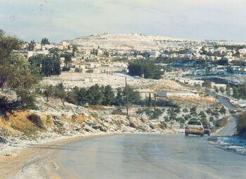 Snow a kdumim 1993 12