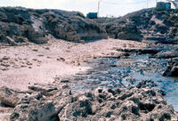 Eolianite beach Dor Israel
