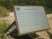 Railway bridge along the First World War from Beersheba to the Sinai desert at Azuz near Nizana 04