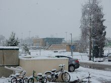 שלג בחספין