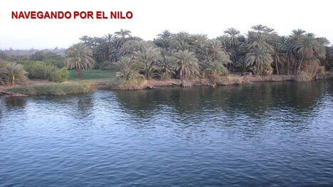 הנילוס 23
