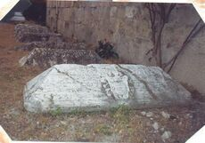 The old tomb near the wall