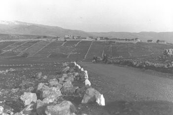 A GENERAL VIEW OF METULA. מטולה בגליל.D29-034