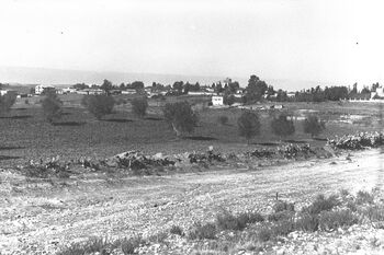 VIEW OF GEDERA VILLAGE. גדרה.D27-070