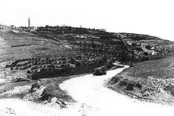 VIEW OF THE MOUNT OF OLIVES DURING THE OTTOMAN ERA IN THE LAND OF ISRAEL. צילום נוף כללי של הר הזיתים בירושלים, בתקופה העותומנית באטרץ ישראל.