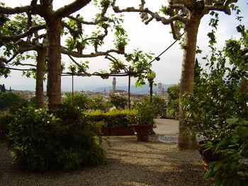 Giardino delle rose 4