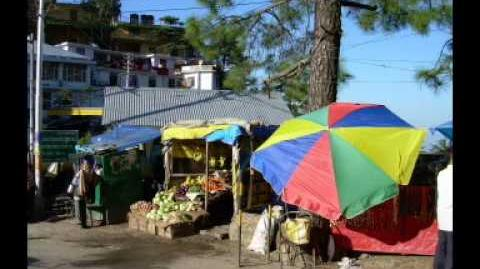A Morning in Dharamsala-1