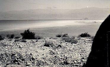 Dead sea journey 2