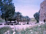 חמאם אל-מליח