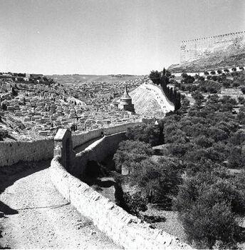 הר הזיתים ויד אבשלום בירושלים-JNF013911 1945