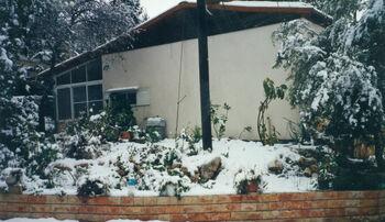 שלג בקדומים 2
