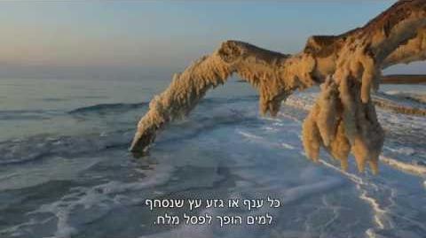 ישראל_הפראית_-_פרק_2_-_חיים_סביב_ים_המוות