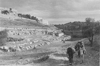 מראה הדרך להר - ציון , ירושלים-JNF001129