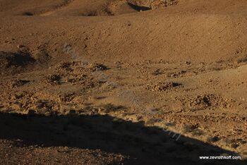 שרידים ארכיאולוגיים בעליה להר מרפק