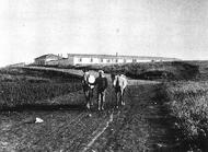 Poria Farm 1912