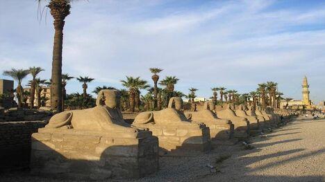הנילוס 99