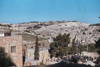 View from City of David to Mount Olive