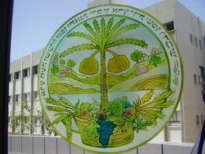 Logo of vulcani institute