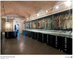 Museo ebraico di roma 1