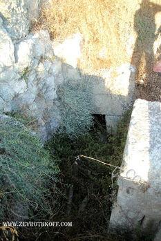 קבר בארמון עמרי
