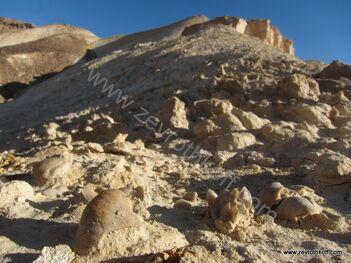 מאובנים בהר מרפק