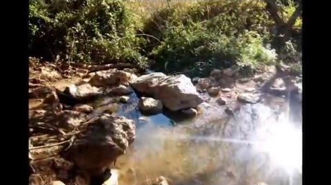 טיול_יום_כיף_בגן_לאומי_נחל_צלמון_בגליל_התחתון_Hiking_in_National_Park_of_Tzalmon_Valley