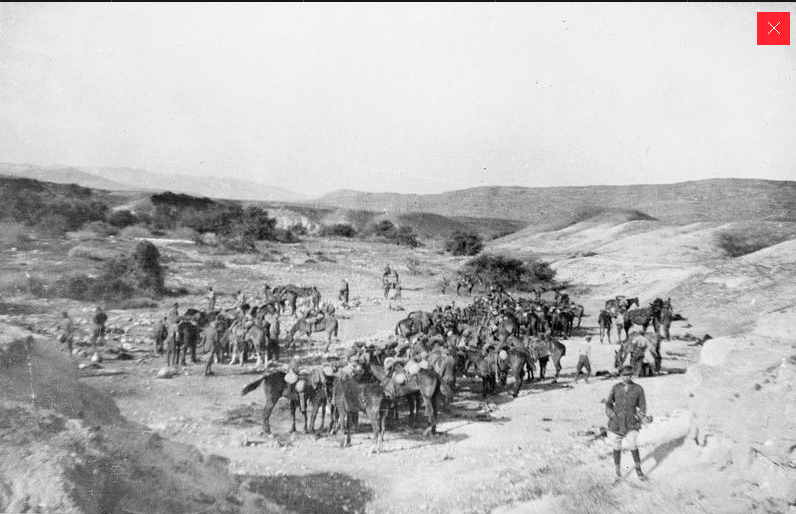 Wadi Auja, Jordan Valley; C. Squadron, Westminster Dragoons, saddles up, Easter, 1918. המקור: מוזיאון המלחמה האימפאריאלי