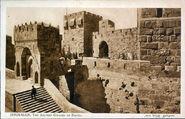 Jerusalem The Ancient Cotadel of David Eliauh Brothe