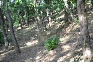 Monte savino40137B בית הקברות