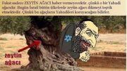 Turchia1-460x258.jpg