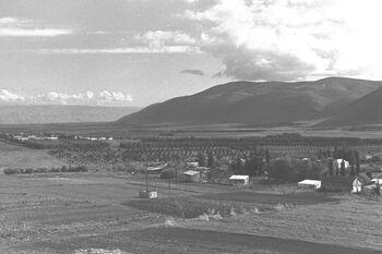 VIEW OF THE JEZREEL VALLEY. נוף של עמק יזרעאל.D20-078