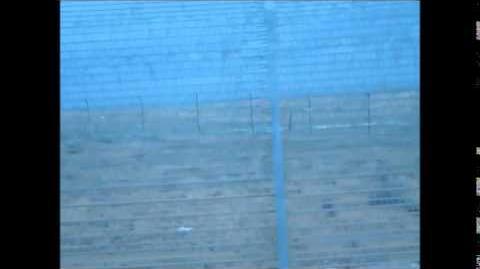 תצפית_למדבר_סיני_מכביש_10_-_זוועה_!!!