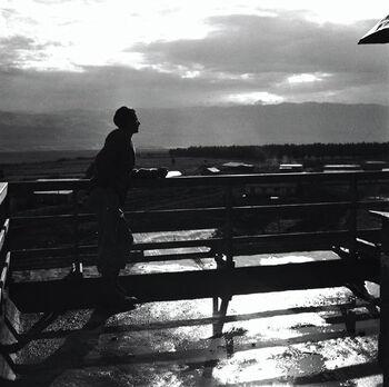 טירת צבי - אחרי הגשם.-JNF032880