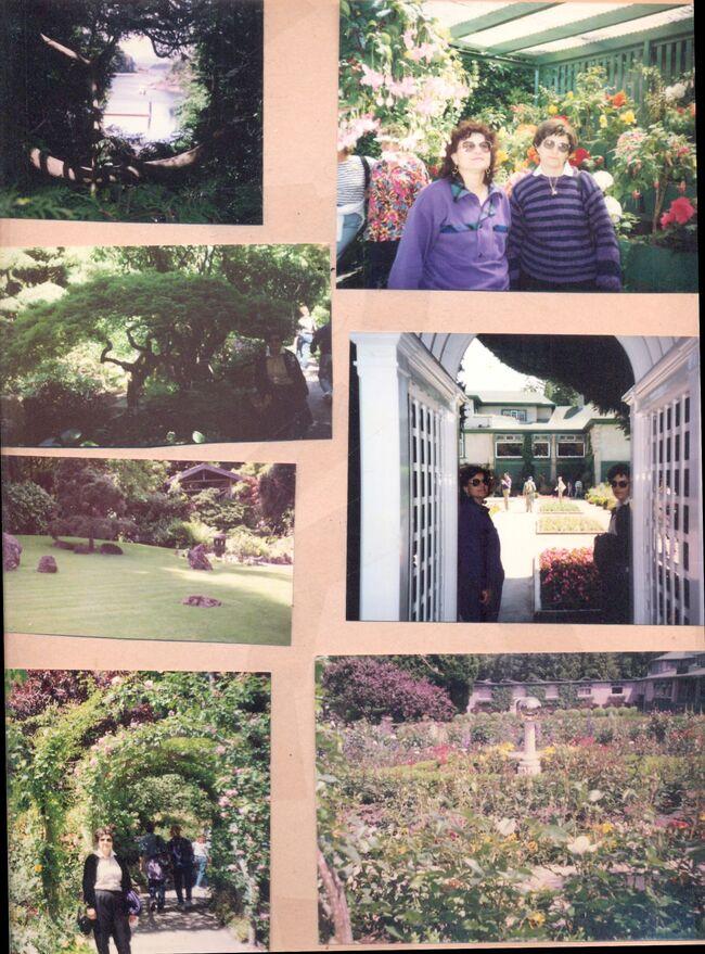 Toronto garden.jpg