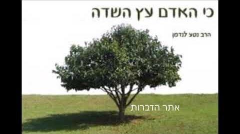 """הרב_מרדכי_ברלין_ט""""ו_בשבט_-_""""כי_האדם_הוא_עץ_השדה"""""""
