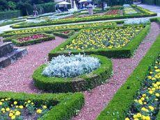 CCTrieste Miramar the King Garden