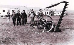 Nechailom 1948