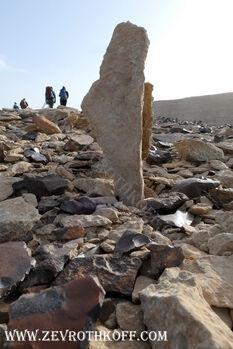 דוגמת מדינת ישראל בהר כרכום