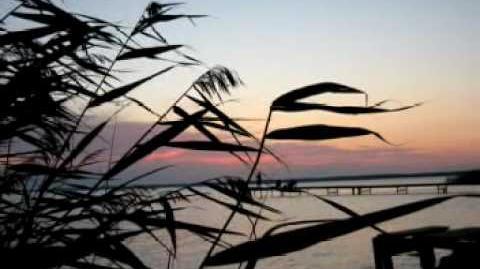 Biscaya - James Last Bildershow