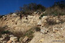 קיר חשמונאי בארטבה