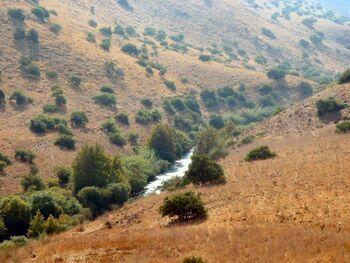 Jordan River near Kfar Hanasi