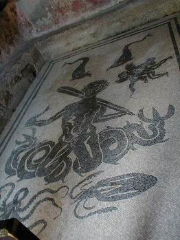 Triton mosaic